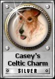 Casey's Celtic Charm Silver Award - June 6, 2006