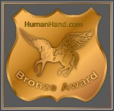 Pegasus Bronze Award - February 15, 1999